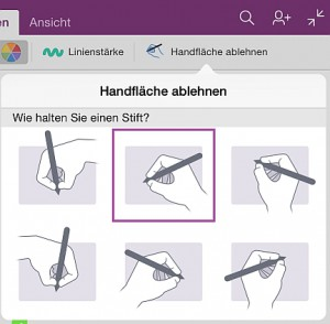 """Die Funktion """"Handfäche ablehnen""""soll ungewollte Eingaben durch den Handballen verhindern – klappt leidlich."""